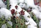 Péče o tělo v zimě dvojnásob