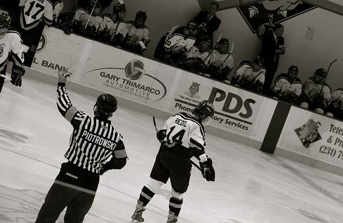 Lední hokej, mistrovství 2013